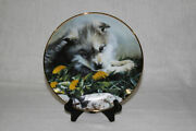 Bradford Exchange Assorted Wolf Themed Collectible Plates