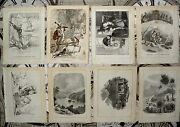 20 Antique Book Plates, Removed From Book Collectible And Vintage. Paper. C1860