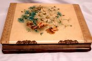 1890's Cabinet Card Photo Album Giant Size Celluloid Cover