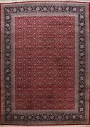 Excellent Floral Sarouk Oriental Area Rug Hand-knotted Wool Palace Size 12x16 Ft