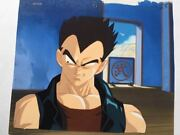 Dragon Ball Cel Picture Jp Anime Collection Tenkaichi Fighting Party Rare