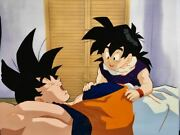 Dragon Ball Large Cel Picture Jp Anime Collection With Video Rare