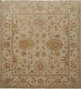 Antique Oushak Egyptian Oriental Area Rug Vegetable Dye Hand-knotted 8x8 Square
