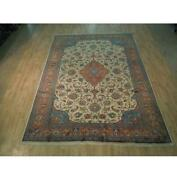 8x11 Authentic Hand Knotted Fine Oriental Rug B-72355