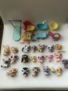 Littlest Pet Shop Lps Assorted Lot Of Pets And Accesories