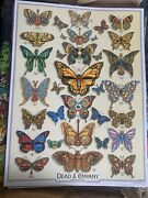 Dead And Company Poster 2019 Concert Vip Tour Emek Print Butterfly Grateful Weir