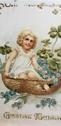 1907 Postcard Birthday Greeting Embossed Childin A Buttock Basket P1