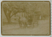Adg  1800's Antique Photo Horse Drawn Carriage Buggy 682a