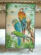 Jewelry Trinket Box Italian Hand Painted Parrots Decorative Collectibles New