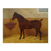 British Equestrian Oil Painting Hedon Squire By Frank Babbage Circa 1901