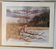 Derk Hansen Silent Hunt Signed And Numbered Wildlife Print Ready To Frame