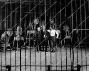 Crp-54877 Rex De Rosselli, William Welsh, Charles Murphy In Circus Lion's Cage S