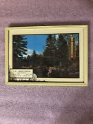 Vintage 1957 Advertising Thermometer River Fly Fishing Scene Calendar