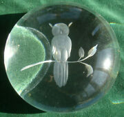Rare Htf Engraved Glass Paper Weight Owl On Branch Large Paperweight Steuben
