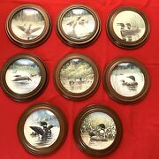 Loon Voice Of North Series Framed Collectorand039s Plate Set 1991 8 Pcs