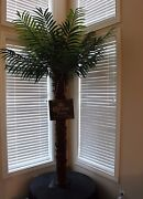 Christmas Corona Extra Beer Artificial Palm Tree Find Your Beach 7 Feet Tall New