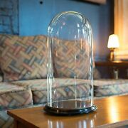 Antique Display Dome, Glass, Taxidermy, Collectibles, Showcase, Edwardian, 1910