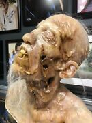 The Walking Dead Zombie Bust Collector Lifesize Halloween Prop