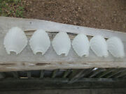 6 Art Deco Frosted Glass Sea Shell Scallop Slip Shades 7 1/2 X 5 1/4 1 15/16