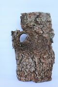 N Ho S O Scale Dried Bark For Train Layouts, Dioramas, School Projects Lot 11