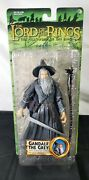 Gandalf The Grey With Light-up Staff Lord Of The Rings Lotr