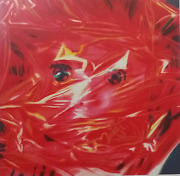 James Rosenquist - Gift Wrapped Doll 1993 - Lithographie Originale Signandeacutee Au Cr