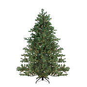 Northlight 9and039 Pre-lit Full Mountain Pine Artificial Christmas Tree Clear Lights