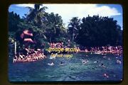 Young Women And Men At A Swimming Hole In The Mid 1940's, Kodachrome Slide F4a