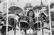 Neil Peart Of The Band Rush Performs At Comiskey Park 1979 Old Music Photo 2