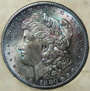 1880 S Tidy House Products Uncirculated Morgan Silver Dollar Awesome Color Toned