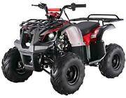 Tao Tao Brand New Ata-125d Fully Automatic Utility Model With Reverse - Red