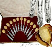 French Sterling Silver Handled 12pc Ice Cream Dessert Spoon Set - Rococo Decor