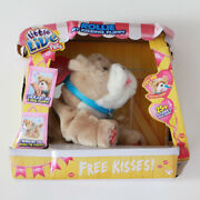 Little Live Pets Rollie My Kissing Puppy Plush Toy
