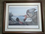 John James Audubon Canvas Backed Duck By R.havell