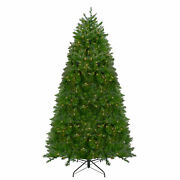 Northlight 12and039 Northern Pine Full Artificial Christmas Tree - Warm Clear Led