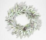 Home Reflections 24 Frosted Greenery Wreath