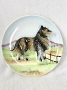 Vintage Collie Dog Plate High Relief 3d Hand Painted Thames Japan 52/566