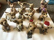 Lot Of 12 Chihuahua Plush Dolls - 11 From Taco Bell, 1 From Different Collection