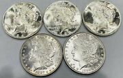 Lot Of 5 Bu Morgan And Peace Silver Dollars Coins Uncirculated Gems