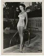 Elizabeth Taylor Cheesecake Swimsuit Alluring Pose 1950s Mgm Orig Photo 448