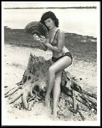1950s Bunny Yeager Bettie Page Cheesecake Pin-up Alluring Original Photo 472