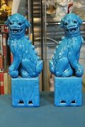 Antique Collectible Large Porcelain Turquoise Pair Of Foo Dog Statues.