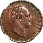 Great Britain William Iv 1/2 Penny 1837 Ngc Ms63 Red And Brown