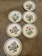 Portmeirion Botanic Garden Salad Plate 8 1/2 In. 6 Plates 4 Different-2 Are Dup