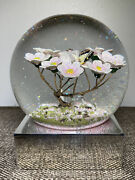 Cool Snow Globe Coolsnowglobe Modern Flowers 2019 Butterfly Pink Sparkles