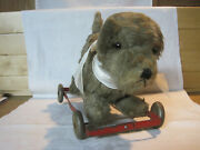 Antique Vintage Terrier Dog Pull Toy On Metal Wheels W/ Glass Eyes