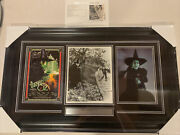 Margaret Hamilton Autograph Signed Wizard Of Oz Wicked Witch Photo Framed Jsa
