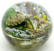 Large Fantastic Jim D'onofrio Colorful Turtle Pond Orchid Art Glass Paperweight