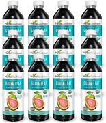 Guava Leaf Extract Juice - Sleep Support | Carb Blocker | Healthy Blood Sugar |