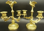 Rare Pair Candleholders, Herons, Louis Xv Style, 19th - Bronze - French Antique